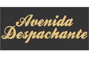 avenida-despachante-sao-vicente